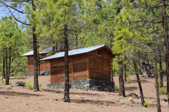 Log cabins stock photo