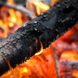 Log in camp fire Stock Photos