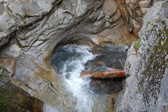Log caught in rocky pool below Christine Falls. Mt. Rainier Park Royalty Free Stock Photography