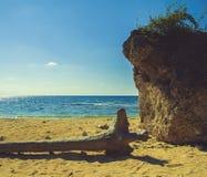 Log, Clift Ocean View Stock Photo