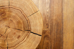Log core against a wooden floor. Top view. Closeup. Background series. Royalty Free Stock Photography