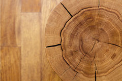 Log core against a wooden floor. Top view. Closeup. Background series. Royalty Free Stock Photo