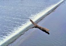 Log On Cusp Of Waterfall Stock Image