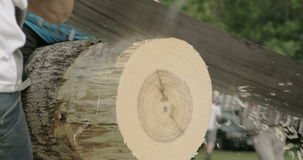A log cutting competition with a big saw stock video footage