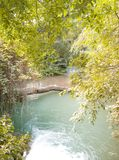 Log da árvore através do rio imagens de stock
