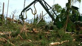 Log da carga e ver do manipulador Funcionamento industrial da ceifeira da floresta na madeira video estoque