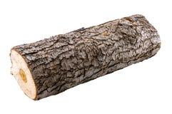 Log de madeira imagem de stock royalty free