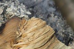 Log de madeira do fundo que encontra-se nas cinzas ardendo sem chama imagens de stock royalty free