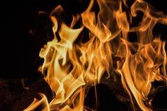 Log de madeira de queimadura Fundo preto fotos de stock
