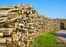 Log deck Royalty Free Stock Image