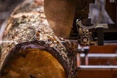 Log do corte da serração Foto de Stock