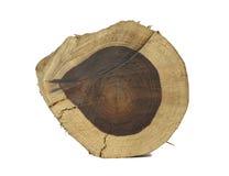 Log do jacarandá Foto de Stock