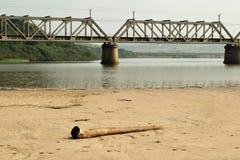 Log e ponte Imagem de Stock