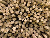 Log Ends. A large collection of wooden poles shot from above to show their circular ends Royalty Free Stock Images
