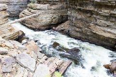 Log fallen across Ausable Chasm near Keeseville, New York Stock Images
