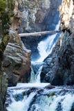 Log fallen across High Falls Gorge. Royalty Free Stock Photo