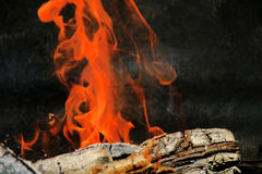 Log on fire. Wood log on fire with nice bright orange dancing flames. Almost an abstract painting, great background Royalty Free Stock Image