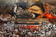 Log fire Royalty Free Stock Image