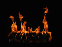 Log on Fire Stock Images