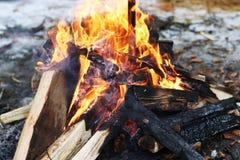 Log fire burning. Burning big log fire in fireplace. Closeup flame. Bonfire campfire Stock Images