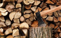 Log for the fireplace Royalty Free Stock Image