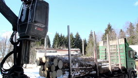 Log forwarder unloading piles of logs from the truck. A fast forward footage of the log forwarder unloading piles of logs from the truck to the ground where stock video