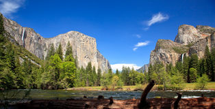 Log framing Yosemite Valley royalty free stock images