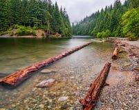 Log gesperrte Ufer Stockbild