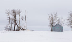 Log grain bin in barren winter landscape Stock Photography