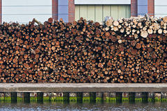 Log harbour Royalty Free Stock Photos