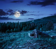 Log on a hillside near the  forests at night Stock Image