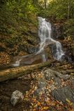 Log Hollow Falls Waterfall. Log Hollow Falls is a scenic 25 foot waterfall in western North Carolina. Seen here in autumn royalty free stock images