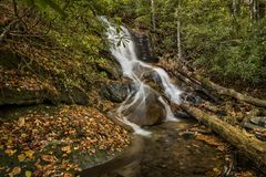 Log Hollow Falls Waterfall Royalty Free Stock Photos