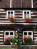 Log house. Beautiful historic log house with flowers in windows Royalty Free Stock Images