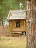 Log house. In the forest Stock Photography