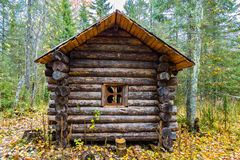 Log hut in a forest Stock Photography
