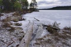 Log in icy lake stock image