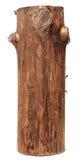 Log isolado em um fundo branco Imagem de Stock Royalty Free