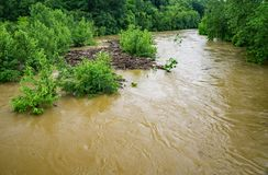 Log Jam from Rising Flood Waters – May 18th, 2018 Stock Photography