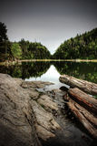 Log on a lake. With reflecting mountains Stock Photography