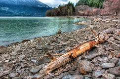 Log Lakeside on Rocky Shoreline Stock Photo
