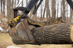 Log loader Royalty Free Stock Images