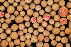 Log lumber timber tree round ring pine spruce tree-ring detail Royalty Free Stock Images