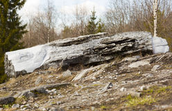 A log lying in the forest. The marble quarry of Ruskeala in Karelia Stock Photography