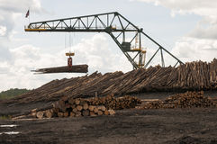 Log moving crane at lumber mill Royalty Free Stock Photo