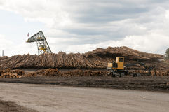 Log moving machines at lumber mill Stock Photography