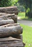Log neben Garten Stockbild