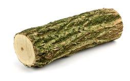 Log obsoleto de madeira! Fotografia de Stock Royalty Free