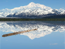A Log in Peaceful Lake Beneath Mt. McKinley stock photography