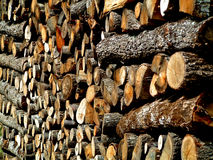 Log Pile. Typical log pile of the south west of France in readiness for winter Royalty Free Stock Image